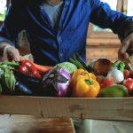 Comment conserver les fruits et légumes: réfrigérateur ou température ambiante?