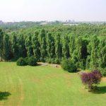 Milan aura bientôt une forêt vivrière: au Parco Nord
