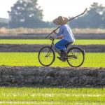 L'histoire d'une machine à riz: Igiea Adami