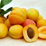 Abricots frais : les meilleures recettes sucrées-salées